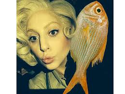 ♫ Can't read my, Can't read my, no he can't read my poach-fish face...♫